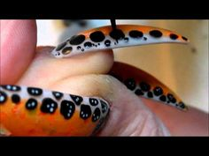 Poison Dart Frog Acrylic Nails ....come sub to me for more video like this !