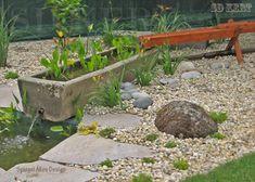 kerti csobogó, kertépítés, kerttervezés, kert Plants, Plant, Planets