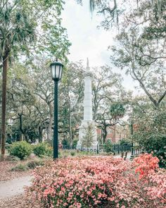 29 Things Nobody Tells You About Savannah, Georgia Savanna Georgia, Georgia Usa, Atlanta Georgia, Savannah Georgia Travel, Savannah Chat, Savannah Georgia Homes, Dream Vacations, Vacation Spots, East Coast Usa