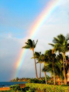 ✮ Tropical Dreamin' - Maui, Hawaii