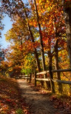 Autumn ~ The Tender Path | autumn in Brown County, Indiana | by Chris Harnish~~