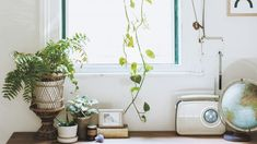 7 ways to style plants inside your tiny urban space, Let's get greening. Garden Oasis, Indoor Garden, Indoor Plants, Bedroom Inspo, Home Bedroom, Pot Plants, Hanging Plants, Bookshelves, Interior And Exterior