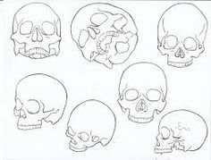 simple skull outline - Google Search