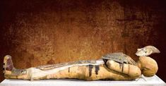 Mummy of Pacheri An ancient Egyptian mummy of a. Mummy of Pacheri An ancient Egyptian mummy of a Pacheri… Ancient Artifacts, Ancient Egypt, Egypt Mummy, Egypt Museum, Nazca Lines, Egyptian Mummies, Funny Fathers Day Gifts, Archaeological Discoveries, Egypt Art