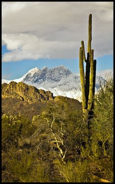 A rare snowstore blanketed the Three Sisters, Superstition Mountains Arizona