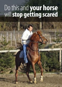 Most of the riders do one mistake that encourages their horse to get scared. Take a guess what that is and then read the article!