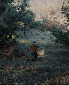 photo by Katrien @growingwildthings for slow living raise