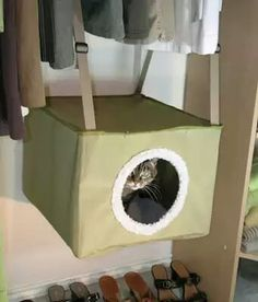 Hanging kitty closet bed Crazy Cat Lady 1761a13bb