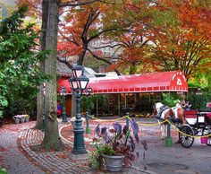 Tavern on the Green- restaurant in Central Park, NYC