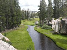 Yellowhammer Creek in the Emigrant Wilderness by USFS Region 5, via Flickr
