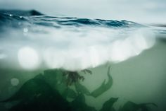 From the water: vanishing ways of life captured in pictures – KAUNAS PHOTO