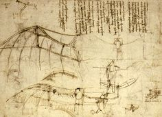 Leonardo da Vinci Flying Machine  #santospiritofirenze