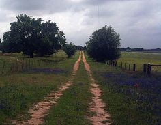 Image from http://images.fineartamerica.com/images-medium-large/texas-country-road-vickie-judkins.jpg.