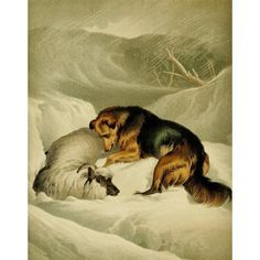 Posterazzi The Shepherds Dog 1870 Shepherds dog in snow Canvas Art - Edwin Landseer (24 x 36)