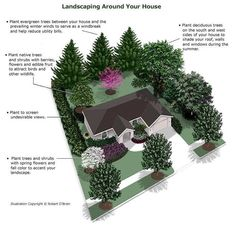 landscape plans Strategically planting deciduous trees near south, east, and west-facing windows will provide needed shade in the summer, but let in the suns during the winter. Landscaping Around House, Landscaping Trees, Privacy Landscaping, Front Yard Landscaping, Privacy Plants, Acreage Landscaping, Backyard Trees, Privacy Screens, Backyard Landscaping Privacy