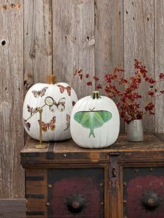 The secret to these moth-adorned marvels? Weather-resistant vinyl decals