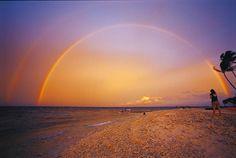 ジープ島公式サイト・JEEP島(jeepisland)は、野生のイルカと泳げるドルフィンスイム天国。