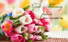 Good Morning Ladies,  Wishing you a beautiful day in Jesus!!!!