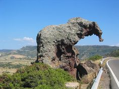 Elephant Rock  Strange Rock Formation that looks like an Elephant. Next to a street on the Island of Sardinia.  Update Nov 27th 2008:  ;-))