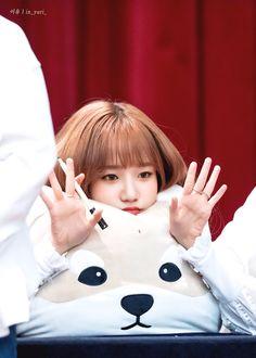 #joyuri #조유리 J Pop, Yuri, Kpop Girl Groups, Kpop Girls, Billie Eilish, Honda, Sakura Miyawaki, Japanese Girl Group, Kim Min