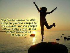 Mind Body Spirit, Encouragement, Frases Humor, Motivation, Inspirational Quotes, Sunset, Words, Outdoor, Google