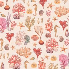 10 Delightful Coral Reef Drawing Images Coral Reef