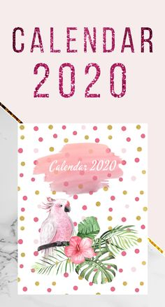 Calendar 2020 with 12 Months and 52 Weeks Planner Calendar Monthly and Weekly Planner With 12 Month and 52 Week Planner and Notebook / Diary / Log / Journal for Organize and Plan Your Activities Paperback Calendar Monthly and Weekly Planner With 12 Mo. Gifts For Women, Gifts For Her, Hunting Birthday, Unique Gifts, Best Gifts, Calendar 2020, Fishing Gifts, Week Planner, New Year Gifts
