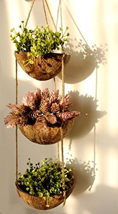 Exotic Elegance 3 Tier Coconut Shell Hanging Planter Pot. Exotic Chic Decor http://www.amazon.com/dp/B00R1O5TYU/ref=cm_sw_r_pi_dp_GmJwvb0NQS15R