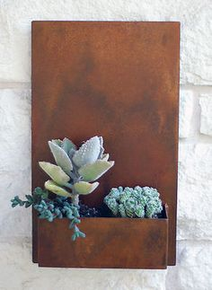 Love this metal wall planter from this round up: Tips on successfully planting succulents in any quirky container you can find + a whole bunch of creative ideas.  #succulents #ad