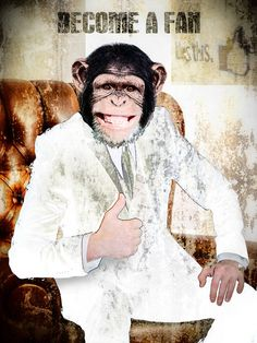 """Saatchi Art Artist: Shirin Donia; Digital 2014 Photography """"""""I LIKE"""" - Limited Edition/99"""" so stupid to put a chimp in a man position. is this a parody"""