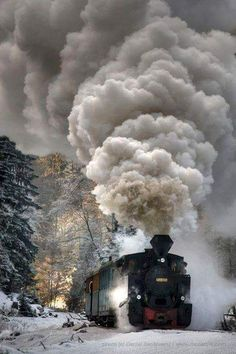 Mocanita - narrow line train , is located in north of Romania, on the Ukraine border and represents a wealth of both technical and cultural, known worldwide as the last true forest railway that works with steam. Old Steam Train, Bonde, Train Times, Train Pictures, Old Trains, Train Engines, Steam Engine, Steam Locomotive, Train Tracks
