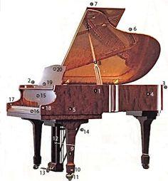 Piano Anatamy