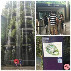Gardens by the bay, cloud forest, Singapore