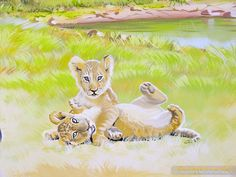 Lion cubs mural