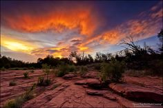 Sunset Near Red Rock Crossing - Arizona Lake Havasu City Arizona, Sedona Arizona, Wonderful Places, Great Places, Beautiful Places, Travel Around The World, Around The Worlds, Arizona Sunrise, Picture Places
