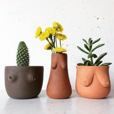 Your uniqueness is what makes you beautiful. Ceramic Pottery, Ceramic Art, Do It Yourself Baby, What Makes You Beautiful, Plants Are Friends, Cactus Y Suculentas, Decoration, Flower Pots, Diy And Crafts