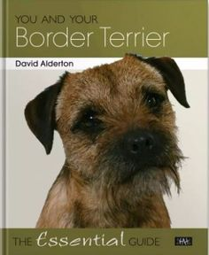 Buy You and Your Border Terrier: The Essential Guide by David Alderton and Read this Book on Kobo's Free Apps. Discover Kobo's Vast Collection of Ebooks and Audiobooks Today - Over 4 Million Titles! Digital History, Border Terrier, Brown Dog, The Essential, Cool Pets, Terrier Dogs, Pictures Of You, This Book, Author