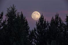 Vuoden lyhintä yötä valaisee tänään täysikuu