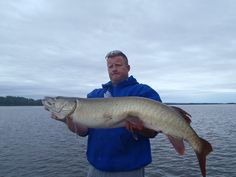 Can barely hold it ... Ottawa River - released