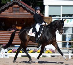 Sharon White and Wundermaske trotted into 13th after dressage but two stops on cross-country moved them down to 21st after cross-country.  Pau 2014