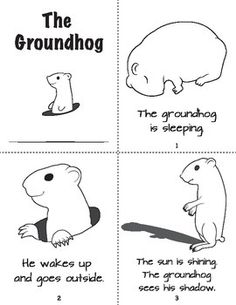 82 Best Groundhog Day Images Groundhog Day Activities Preschool