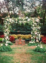 fresh spirited charleston wedding