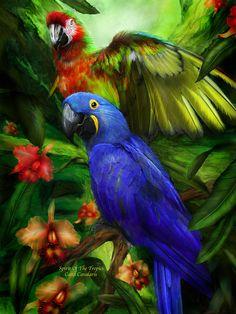 Spirit Of The Tropics ~ Carol Cavalaris