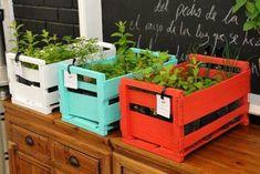 Huerta en casa Wood Planters, Garden Planters, Herb Garden, Vegetable Garden, Planter Boxes, Green Apartment, Outdoor Garden Decor, Herbs Indoors, Green Life