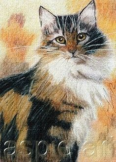 ACEO print limited edition ginger kitten cat  by Anna Hoff