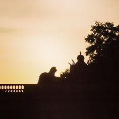 #buckinghampalace surrounds #royal #London #tourist #sightseeing with @missjworldview #silhoutte #lion #roar by jmw0202