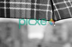 Raindrops Rain Drops, Ibm, Tech Companies, Company Logo, Logos, Logo