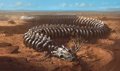 Squelette de serpent géant dans le désert