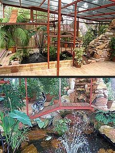 A catio that  brings the outdoors inside