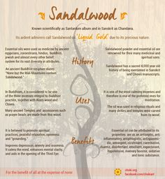 "Learning about sacred plants: Sandalwood ""Look deep into nature. And then you…"